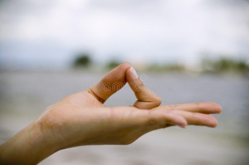 Download το χέρι θέτει το Youga γυναικών & Στοκ Εικόνα - εικόνα από πλευρά, υγιής: 1533175