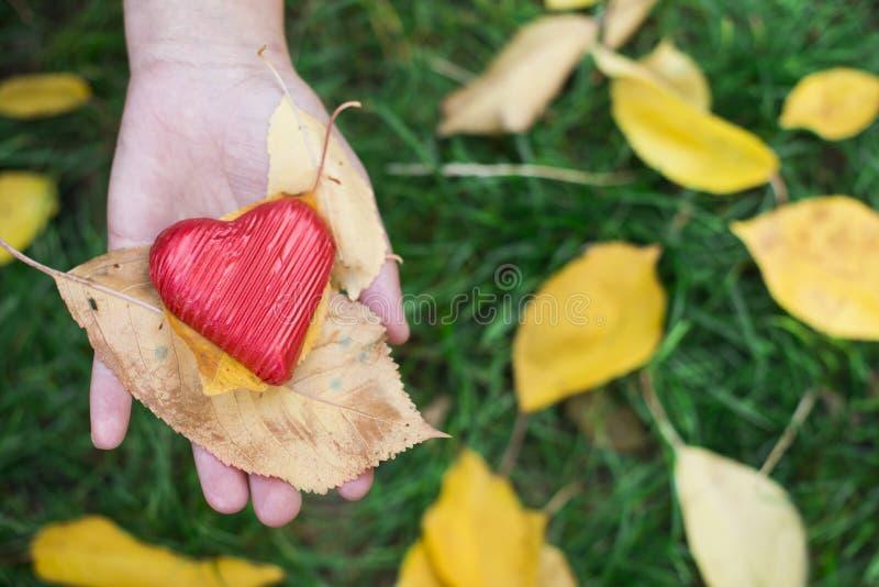 Το χέρι που κρατά την κόκκινη καρδιά και το φθινόπωρο βγάζει φύλλα στοκ φωτογραφίες με δικαίωμα ελεύθερης χρήσης