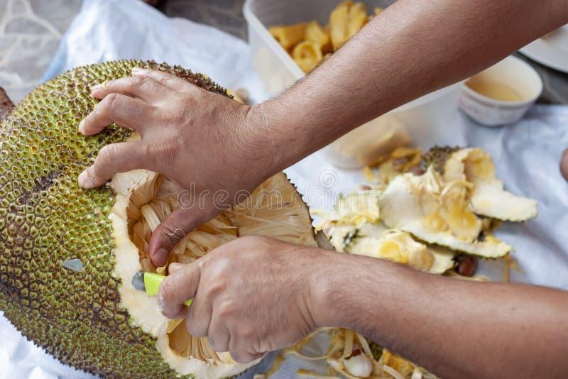 Το χέρι του ατόμου κρατά ένα μαχαίρι για να κόψει το jackfruit στοκ εικόνες