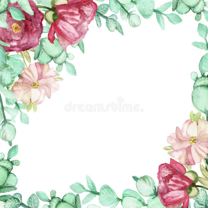 Το χέρι Watercolor χρωμάτισε το πλαίσιο θερινών ανθοδεσμών με τα πράσινα φύλλα ευκαλύπτων και τα ρόδινα pion λουλούδια διανυσματική απεικόνιση