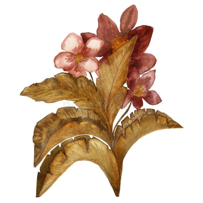 Το χέρι Watercolor χρωμάτισε το σχέδιο των κίτρινων και πορτοκαλιών φύλλων φθινοπώρου με Burgundy τα λουλούδια που απομονώθηκαν σ ελεύθερη απεικόνιση δικαιώματος