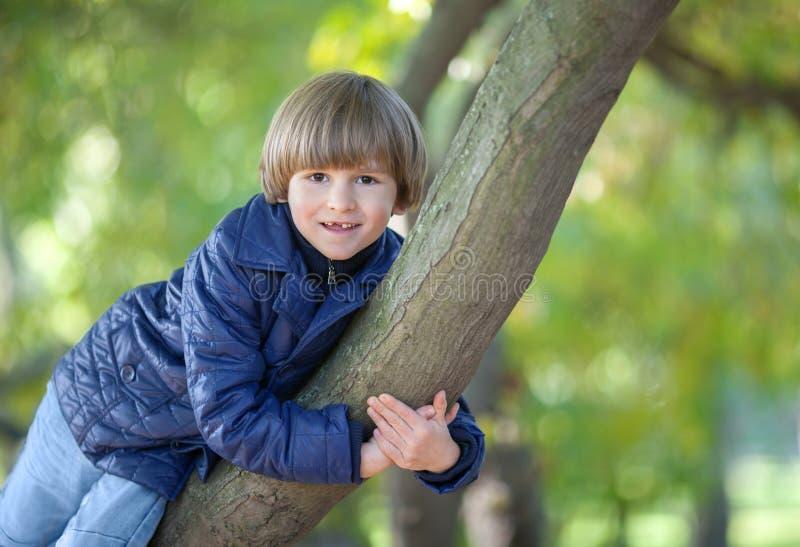 Το χαμογελώντας αγόρι αγκαλιάζει έναν κορμό δέντρων στοκ εικόνα με δικαίωμα ελεύθερης χρήσης