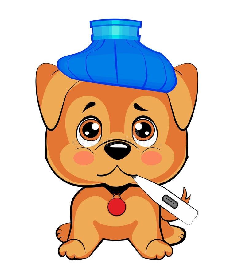 Το χαριτωμένο σκυλί είναι άρρωστο ένα μικρό κουτάβι κάθεται κατακόρυφα, ένα μπλε μπουκάλι νερό στο κεφάλι του, ένα θερμόμετρο στο απεικόνιση αποθεμάτων