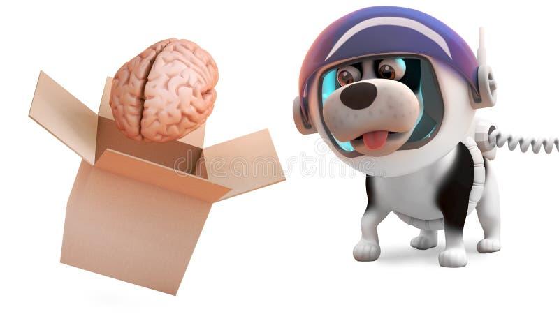 Το χαριτωμένο σκυλί κουταβιών στη φόρμα αστροναύτη προσέχει το επιπλέον σώμα εγκεφάλου από το κιβώτιο, τρισδιάστατη απεικόνιση διανυσματική απεικόνιση