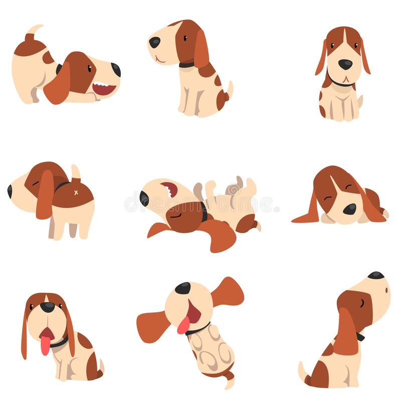 Το χαριτωμένο σκυλί λαγωνικών σε διάφορο θέτει το σύνολο, αστεία ζωική διανυσματική απεικόνιση χαρακτήρα κινουμένων σχεδίων σε έν ελεύθερη απεικόνιση δικαιώματος