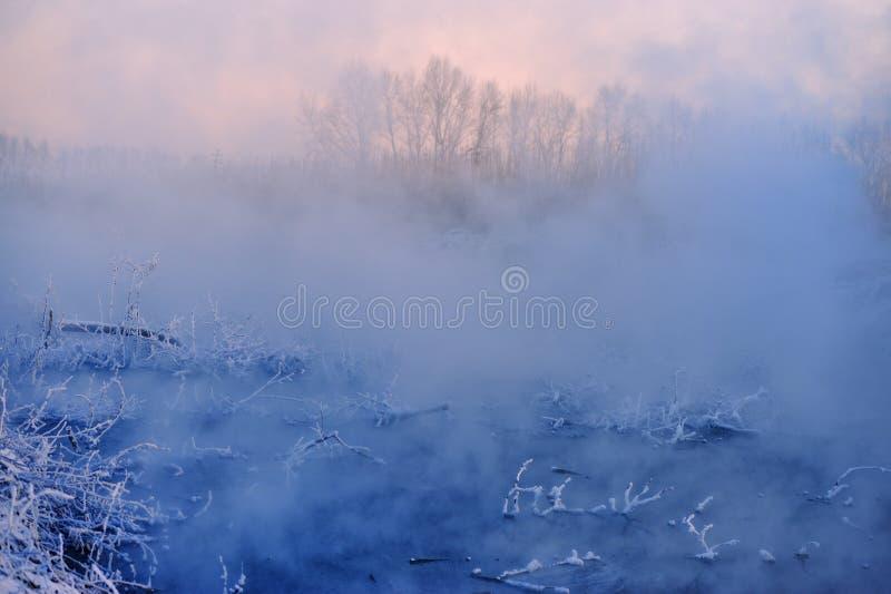 Το χειμερινό πρωί στοκ φωτογραφίες με δικαίωμα ελεύθερης χρήσης