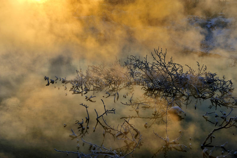 Το χειμερινό πρωί στοκ φωτογραφίες