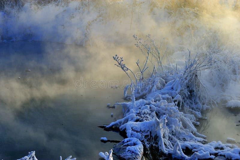 Το χειμερινό πρωί στοκ εικόνα