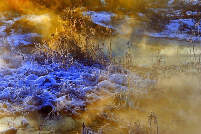 Το χειμερινό πρωί στοκ εικόνα με δικαίωμα ελεύθερης χρήσης