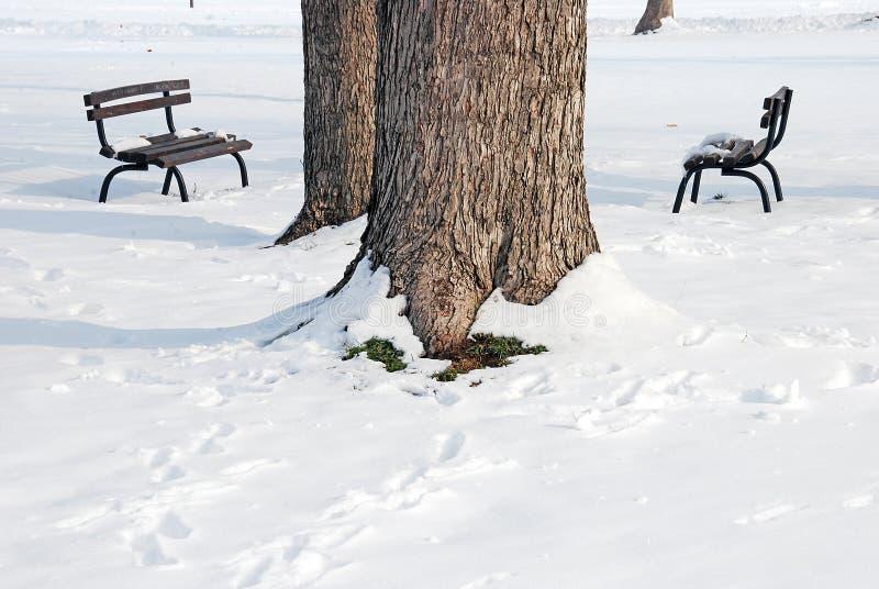 Το χειμερινό τοπίο λεπτομερειών με δύο πάγκους στοκ εικόνες