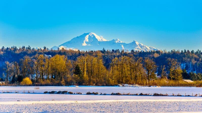 Το χειμερινό τοπίο της κοιλάδας Fraser στη Βρετανική Κολομβία, Καναδάς με το κοιμισμένο ηφαίστειο τοποθετεί Baker στο υπόβαθρο στοκ εικόνες με δικαίωμα ελεύθερης χρήσης