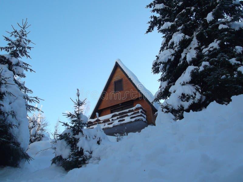 Το χιονισμένο σπίτι βουνών στο δάσος στοκ φωτογραφία