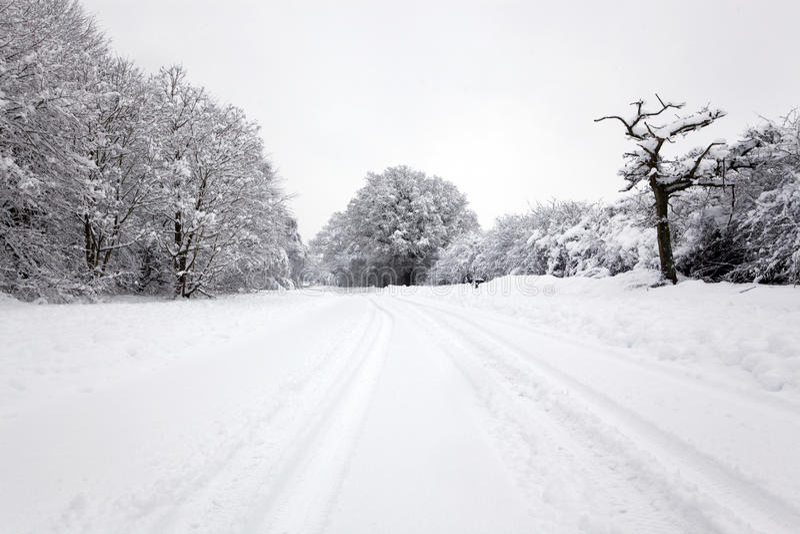Download το χιόνι ακολουθεί το ε& στοκ εικόνα. εικόνα από χιόνι - 17057011