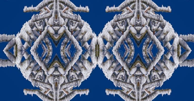Το χιόνι και ο πάγος στους κλάδους είναι μαγικοί στοκ φωτογραφία με δικαίωμα ελεύθερης χρήσης