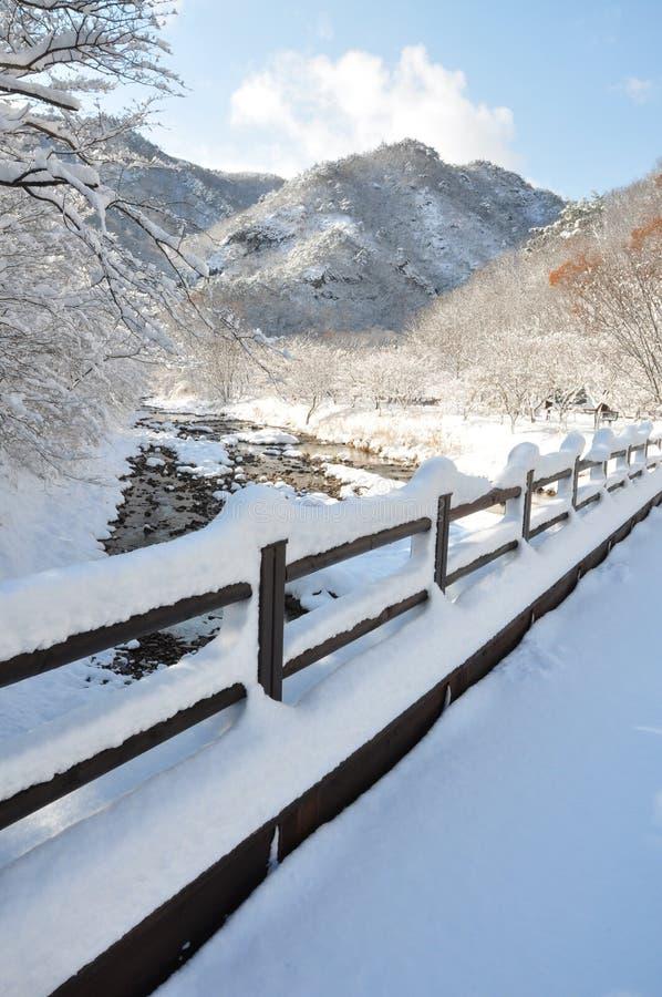 Το χιόνι στοκ φωτογραφίες