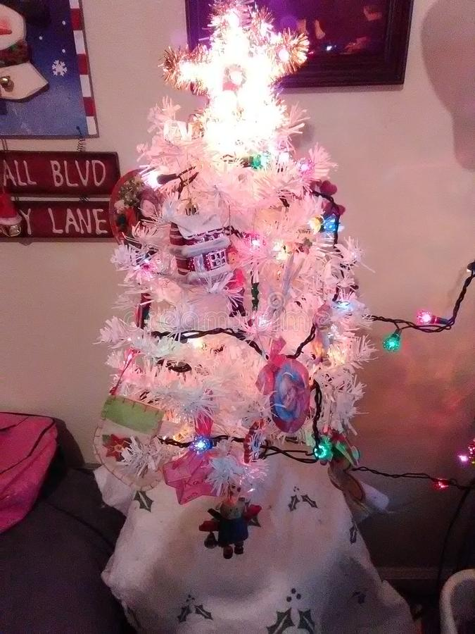 Το χριστουγεννιάτικο δέντρο μας στοκ φωτογραφίες με δικαίωμα ελεύθερης χρήσης
