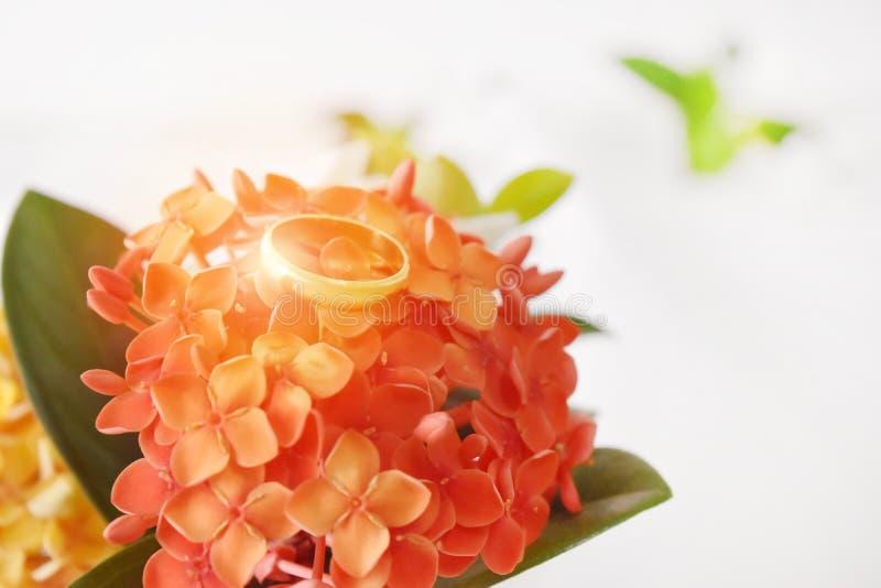 Το χρυσό δαχτυλίδι έχει μια ειδική ημέρα Στο υπόβαθρο είναι κόκκινο, κενό διάστημα λουλουδιών θαμπάδων για το κείμενο στοκ εικόνες με δικαίωμα ελεύθερης χρήσης