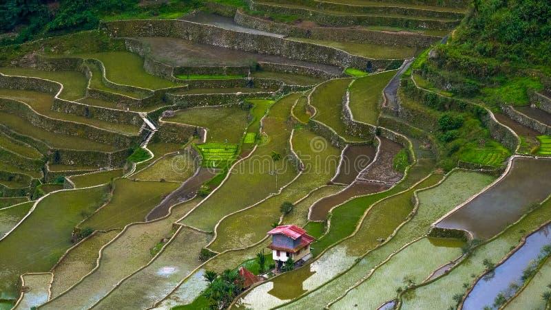 Το χωριό στεγάζει κοντά στους τομείς πεζουλιών ρυζιού Καταπληκτική αφηρημένη σύσταση Banaue, Φιλιππίνες στοκ εικόνα με δικαίωμα ελεύθερης χρήσης