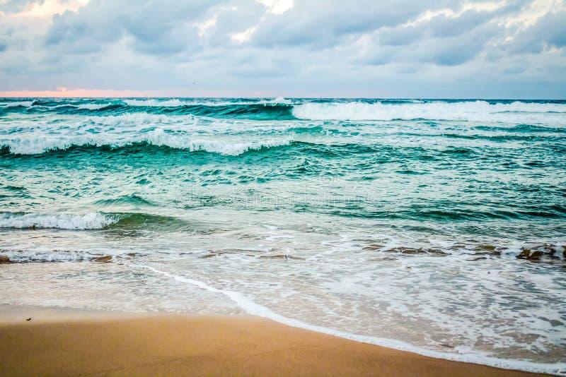 Το ωκεάνιο ` s βαθιά στην παραλία Bondi στοκ φωτογραφία