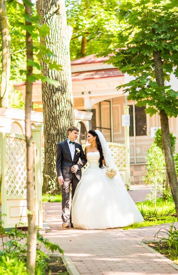 Το όμορφο γαμήλιο ζεύγος απολαμβάνει το γάμο στοκ εικόνα με δικαίωμα ελεύθερης χρήσης