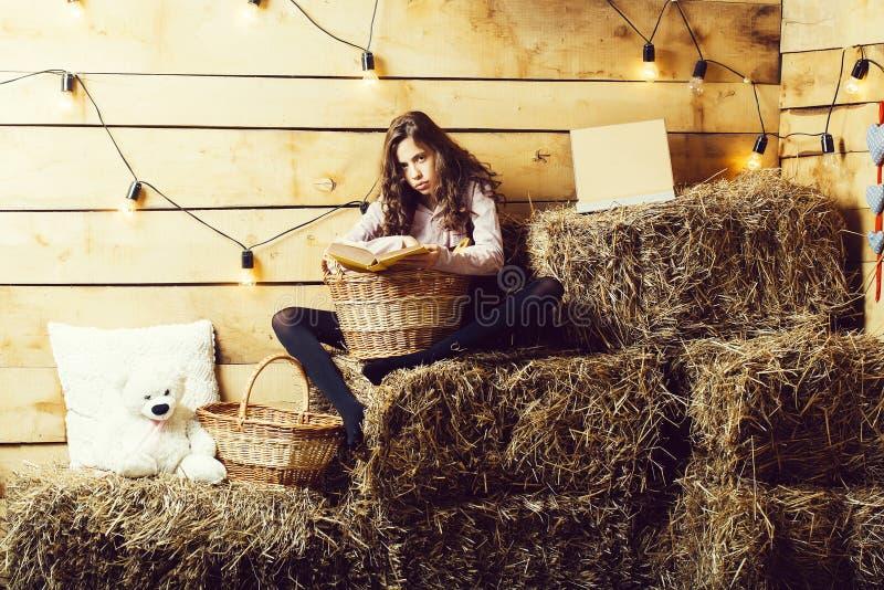 Το όμορφο κορίτσι διαβάζει το βιβλίο στοκ εικόνες με δικαίωμα ελεύθερης χρήσης