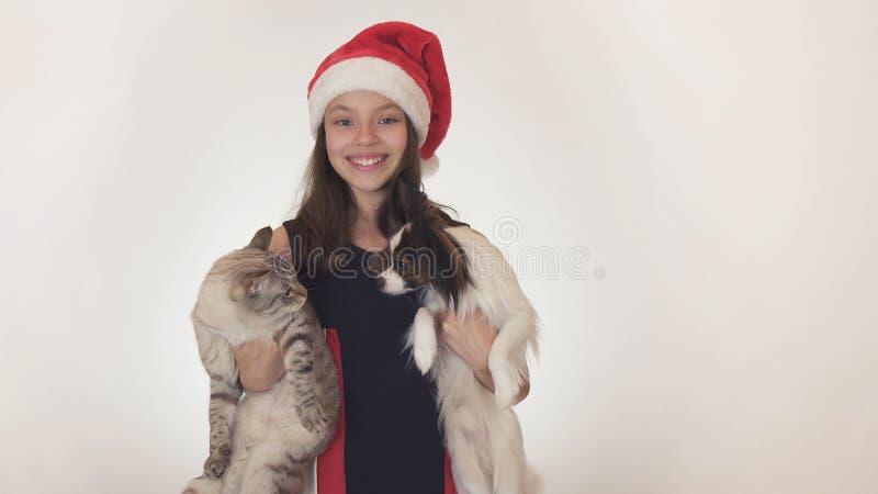 Το όμορφο κορίτσι εφήβων στο καπέλο Άγιου Βασίλη αγκαλιάζει τη γάτα και το σκυλί της στο άσπρο υπόβαθρο στοκ φωτογραφίες με δικαίωμα ελεύθερης χρήσης
