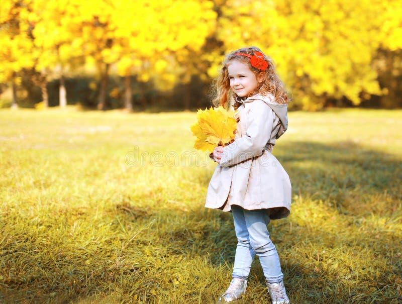 Το όμορφο μικρό κορίτσι φωτογραφιών φθινοπώρου με τον κίτρινο σφένδαμνο βγάζει φύλλα στοκ φωτογραφία