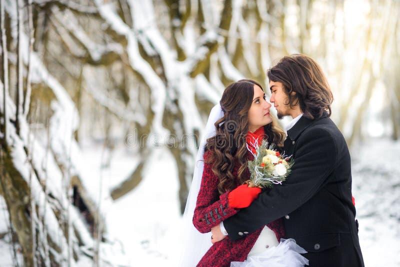 Το όμορφο νέο ζεύγος στο πάρκο χιονιού, ο νεόνυμφος αγκαλιάζει ήπια και θαυμάζει τη νύφη που στέκεται επάνω είναι πιό ερυθρό στοκ εικόνες