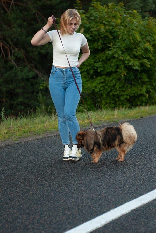 Το όμορφο ξανθό κορίτσι σέρνει το σκυλί της σε ένα λουρί, στοκ εικόνες