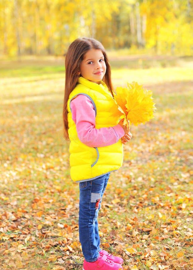 Το όμορφο παιδί μικρών κοριτσιών πορτρέτου με τον κίτρινο σφένδαμνο βγάζει φύλλα το φθινόπωρο στοκ εικόνα