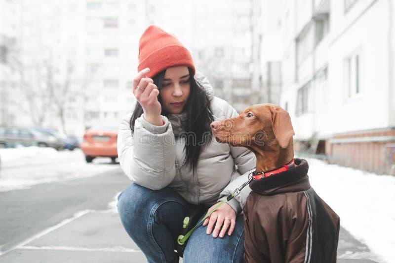 Το όμορφο χαμογελώντας κορίτσι στα θερμά χειμερινά ενδύματα κρατά ένα ντυμένο σκυλί στο υπόβαθρο της οδού και των κτηρίων στοκ εικόνες με δικαίωμα ελεύθερης χρήσης