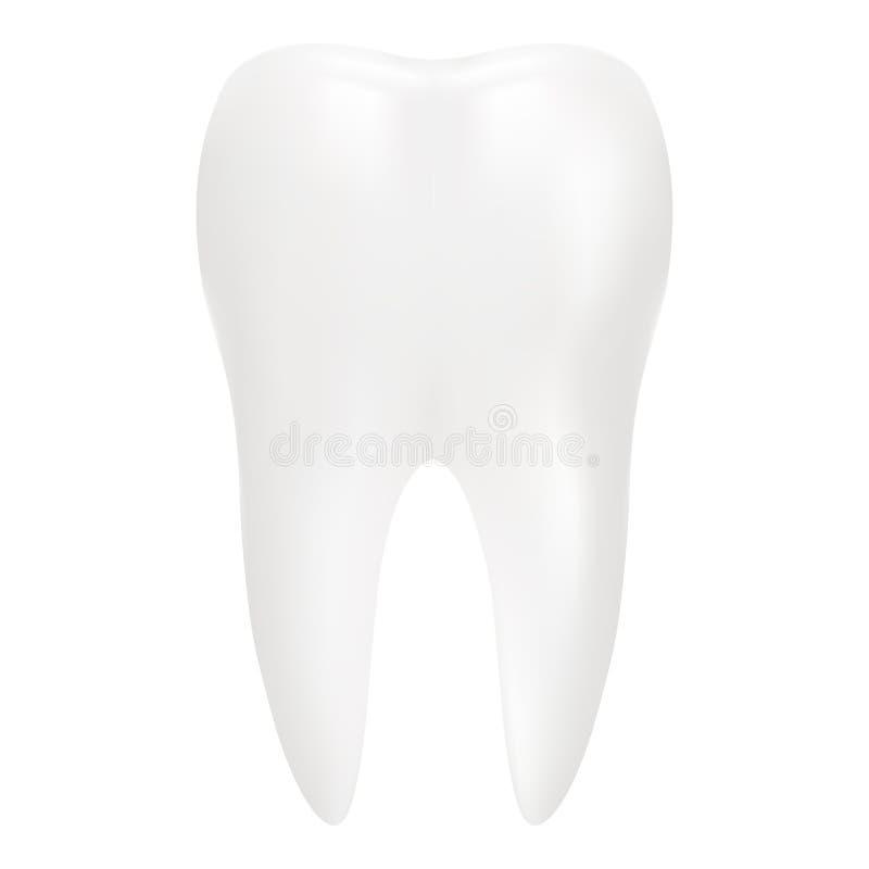 Το δόντι, τρισδιάστατο δίνει Οδοντικός, ιατρική και στοιχείο σχεδίου έννοιας υγείας που απομονώνεται σε ένα άσπρο υπόβαθρο Ρεαλισ ελεύθερη απεικόνιση δικαιώματος