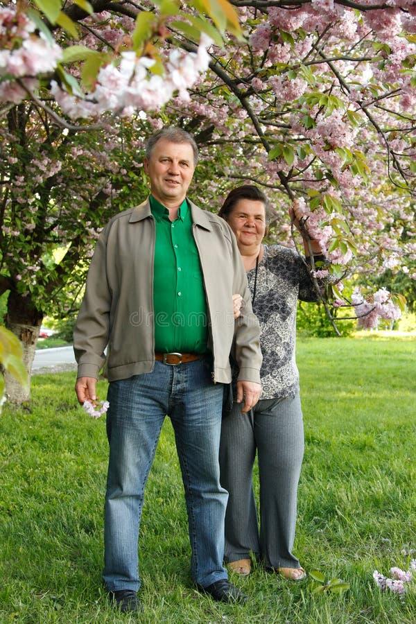 Το ώριμο ευτυχές αγκάλιασμα ζευγών καλλιεργεί την άνοιξη στοκ φωτογραφία με δικαίωμα ελεύθερης χρήσης