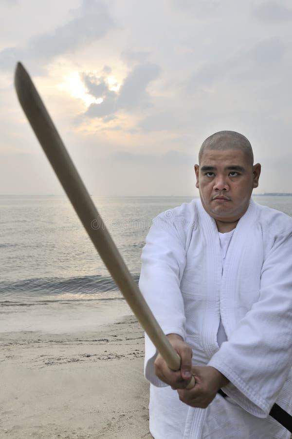το aikido το άτομο στοκ εικόνες