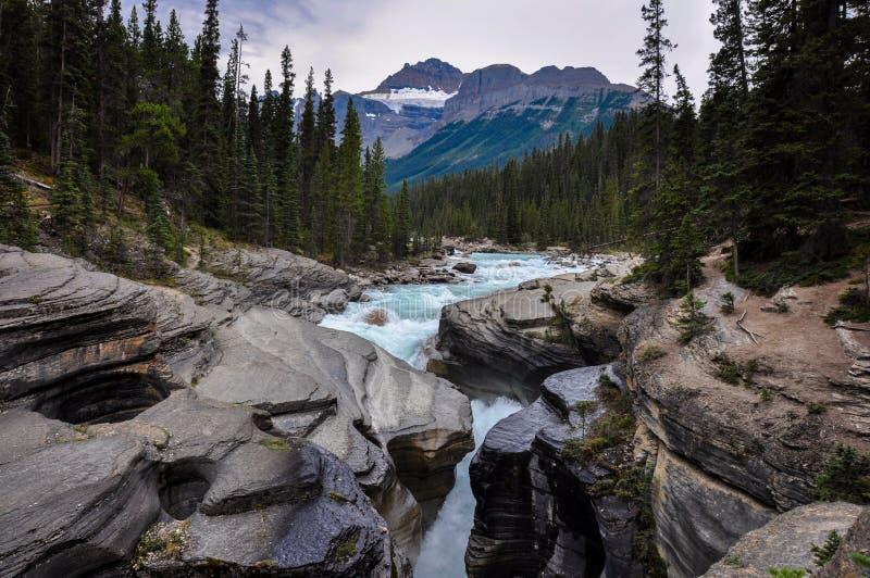 Το Athabaska πέφτει δύσκολα βουνά, Αλμπέρτα, Καναδάς στοκ εικόνα