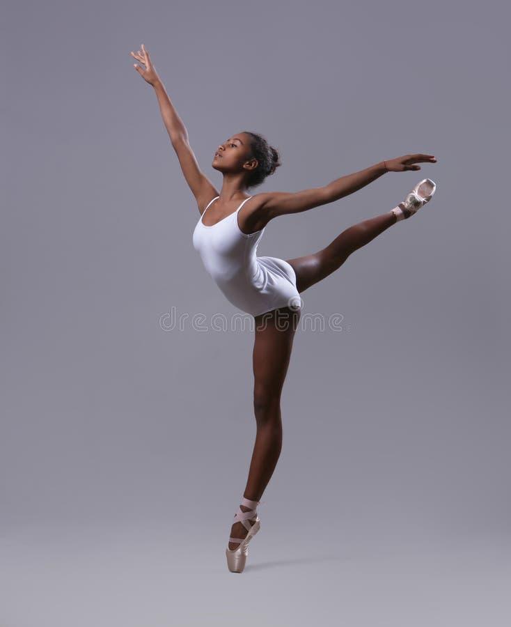 Το Ballerina θέτει ` καταπίνει ` στοκ εικόνα με δικαίωμα ελεύθερης χρήσης