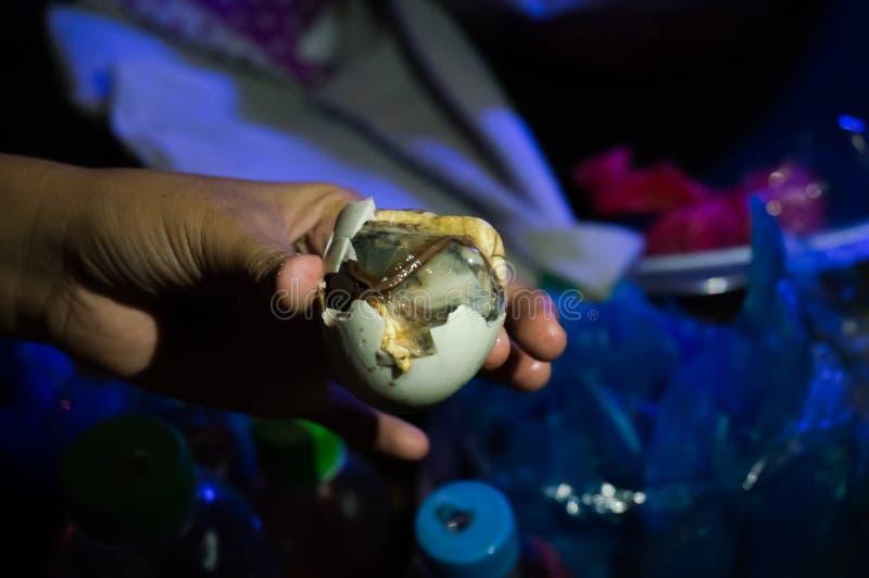 Το Balut είναι μια ειδική κουζίνα στην Ασία στοκ φωτογραφία με δικαίωμα ελεύθερης χρήσης