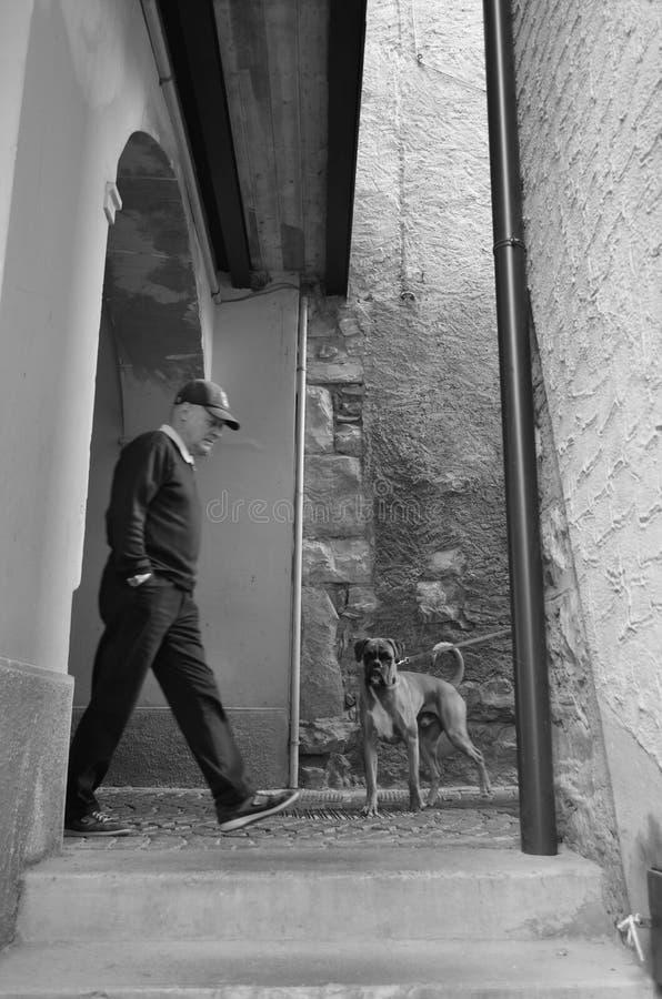 το barri της Βαρκελώνης περιοχής του 2008 gottic μπορεί οδός της Ισπανίας σκηνής στοκ φωτογραφία με δικαίωμα ελεύθερης χρήσης