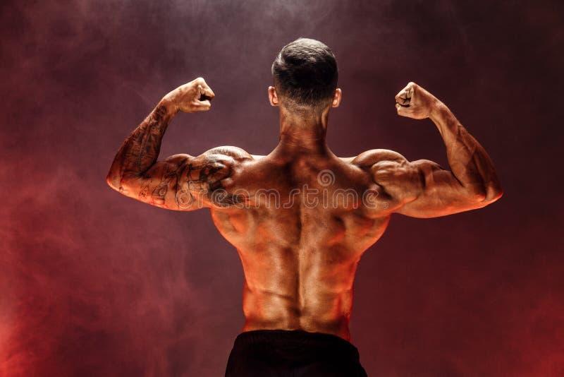 Το Bodybuilder που εκτελεί τους οπίσθιους διπλούς δικέφαλους μυς θέτει στοκ εικόνες με δικαίωμα ελεύθερης χρήσης
