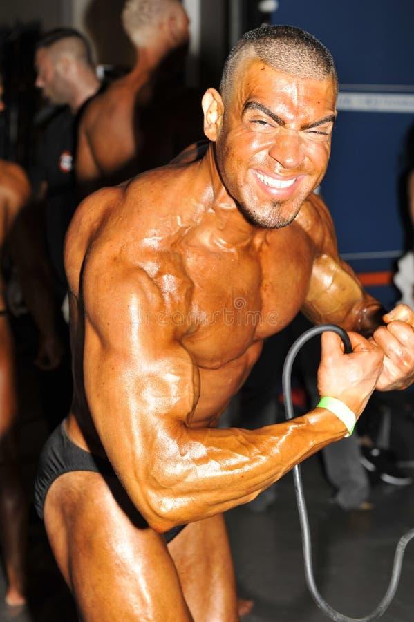 Το Bodybuilder σε πιό μυϊκό θέτει στοκ φωτογραφίες με δικαίωμα ελεύθερης χρήσης