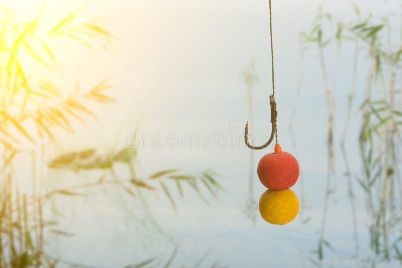 Το Boilies και γαντζώνει όλων έτοιμων για τον κυπρίνο που αλιεύουν στη λίμνη Κόλλα αντιγράφων στοκ φωτογραφίες