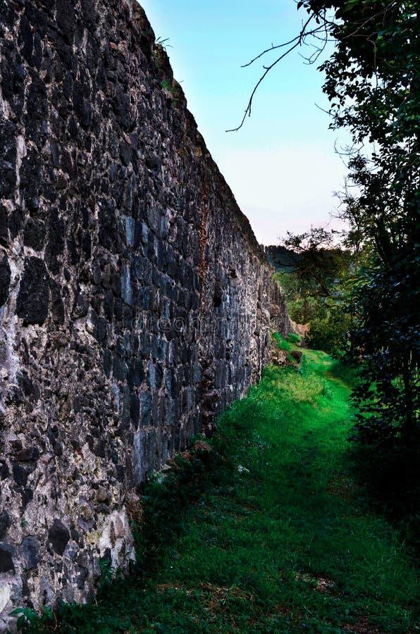 Το Castle ο τοίχος με την πρασινάδα στοκ εικόνες