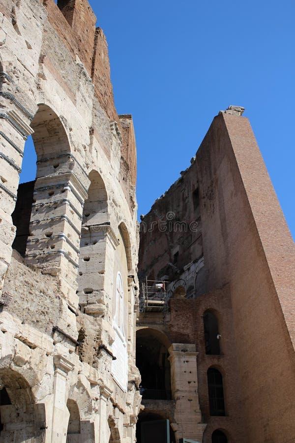 Το Colosseum στη Ρώμη, πλάγια όψη στοκ εικόνες