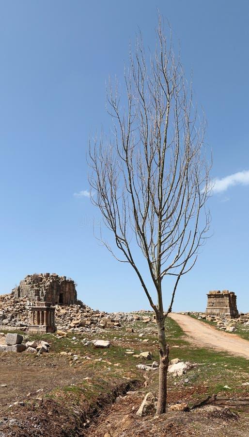 το faqra Λίβανος Ρωμαίος καταστρέφει το ναό στοκ φωτογραφία με δικαίωμα ελεύθερης χρήσης