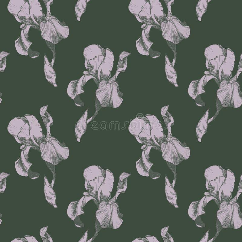 Το Floral άνευ ραφής σχέδιο με συρμένη τη χέρι ίριδα μελανιού ανθίζει στο πράσινο υπόβαθρο σκόνης Λουλούδια που παρατάσσονται σε  ελεύθερη απεικόνιση δικαιώματος