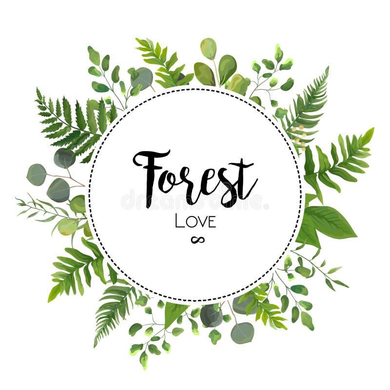 Το Floral διάνυσμα προσκαλεί το σχέδιο καρτών με την πράσινη φτέρη ευκαλύπτων leav διανυσματική απεικόνιση