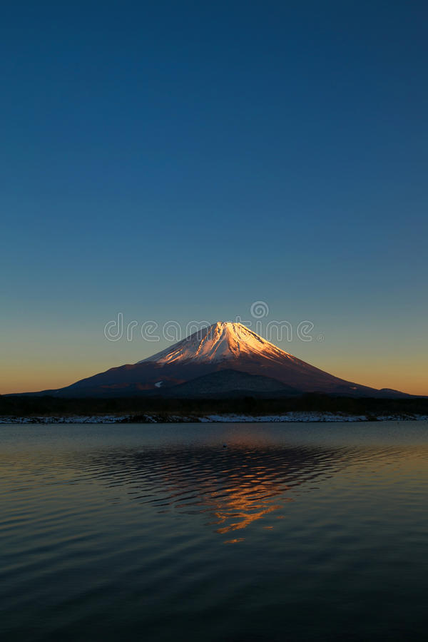 το fuji επικολλά στοκ φωτογραφίες με δικαίωμα ελεύθερης χρήσης