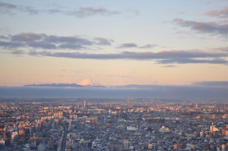το fuji Ιαπωνία επικολλά στοκ εικόνα