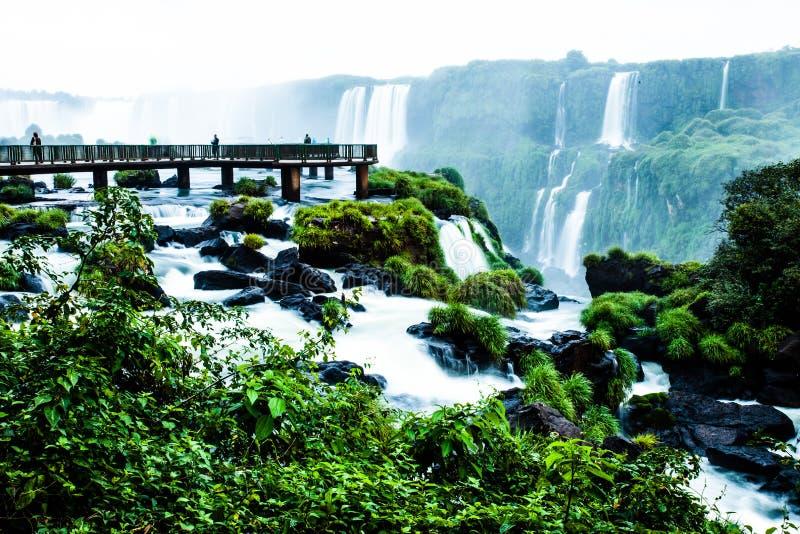 Το Iguassu πέφτει, η μεγαλύτερη σειρά καταρρακτών του κόσμου, άποψη από τη βραζιλιάνα πλευρά στοκ εικόνα με δικαίωμα ελεύθερης χρήσης