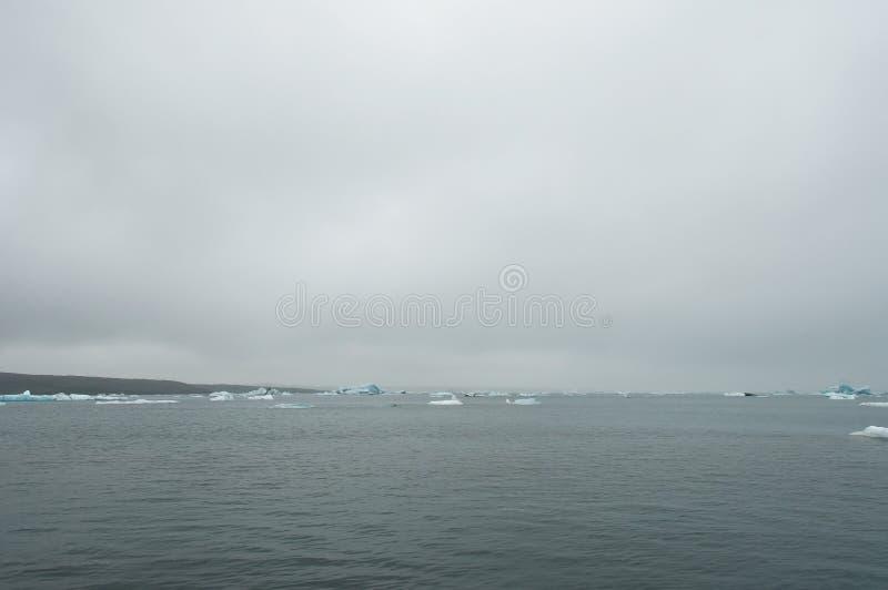 Το Jökulsà ¡ rlà ³ ν είναι μια παγετώδης λίμνη στην Ισλανδία, τοποθετημένος νότος του παγετώνα Vatnajökull, από μια μαύρη παραλ στοκ εικόνες με δικαίωμα ελεύθερης χρήσης